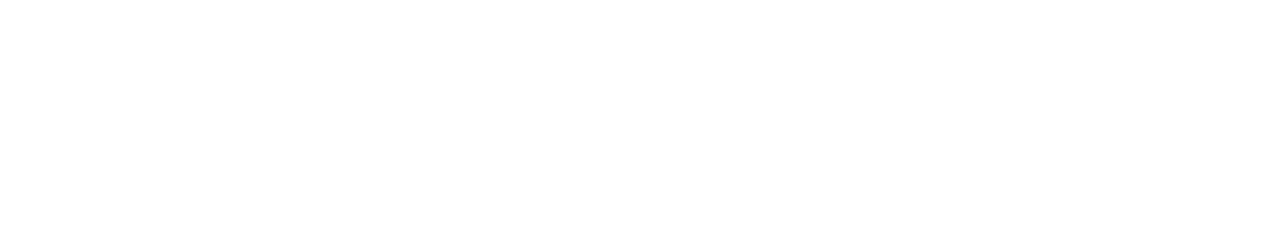 The Digital Boutique logo